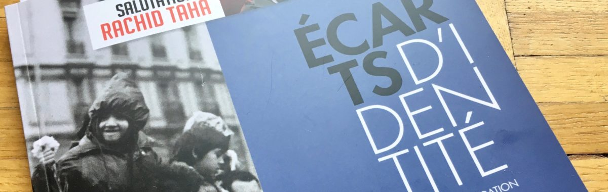 «Dire les indiscernables»: mon article dans la revue Ecarts d'identité